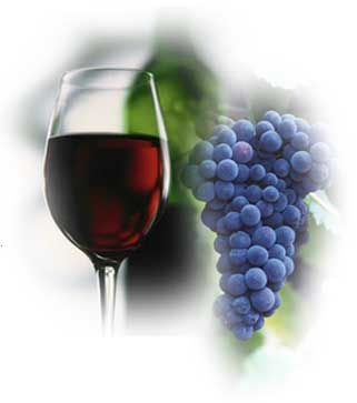 Red Wine for curing Blinding Diseases