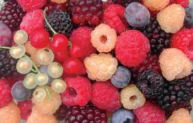 reduce risk of parkinson's disease with berries