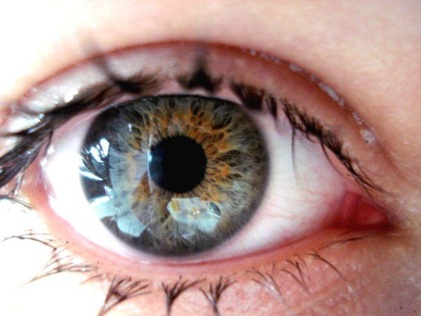 Food That Is Good For Dry Eyes