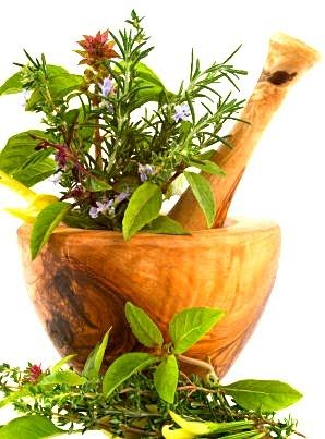http://healthveda.com/wp-content/uploads/2012/01/tulsi-and-its-medicianl-values.jpg