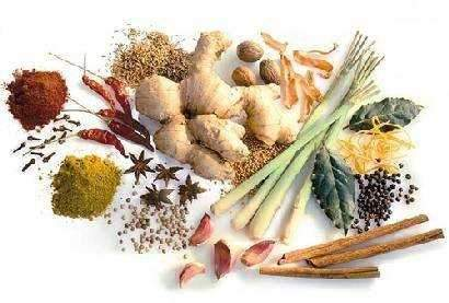 Ayurvedic Remedies for Incompatible Food Combinations