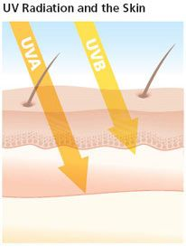 UV-Radiation-and-Skin