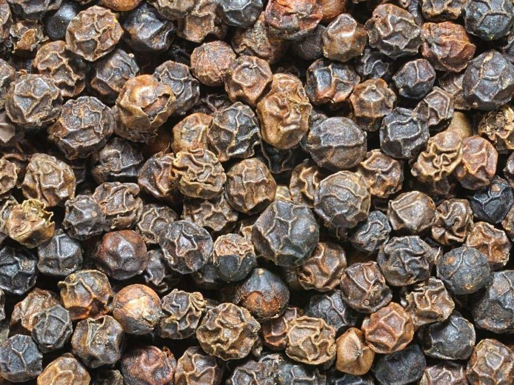 Black Pepper for treatment of Tuberculosis