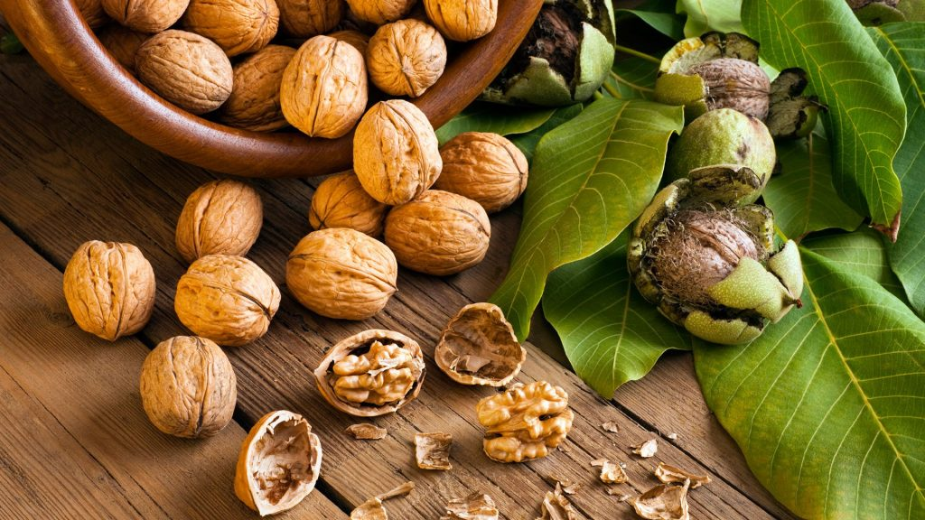 Walnuts for Tuberculosis